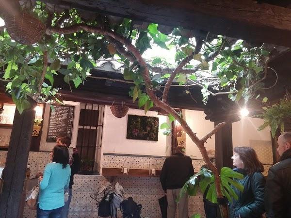 Imagen 96 Gaona Jardín foto