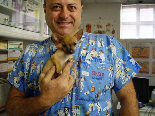 Imagen 17 Centro Clínico Veterinario foto
