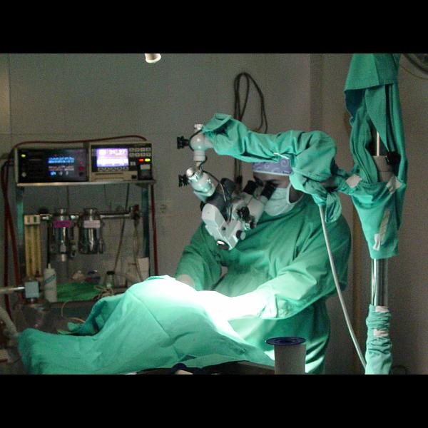 Imagen 18 Centro Clínico Veterinario foto