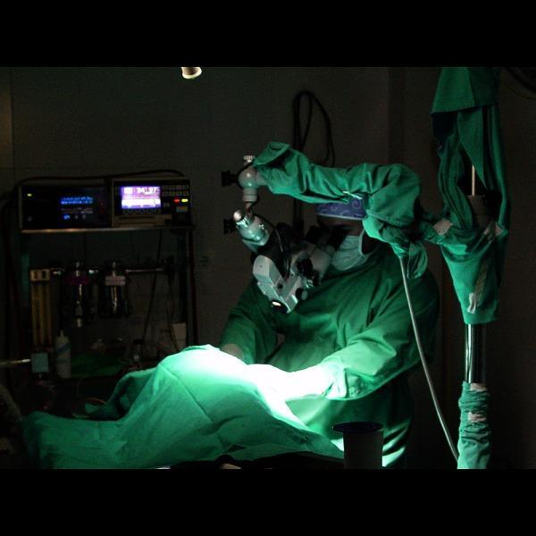 Imagen 44 Centro Clínico Veterinario foto