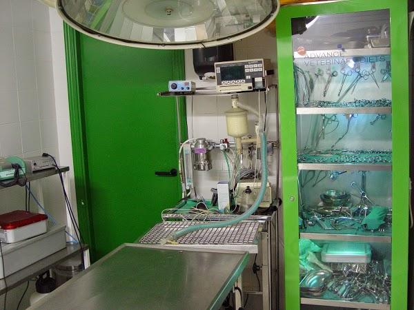 Imagen 46 Centro Clínico Veterinario foto
