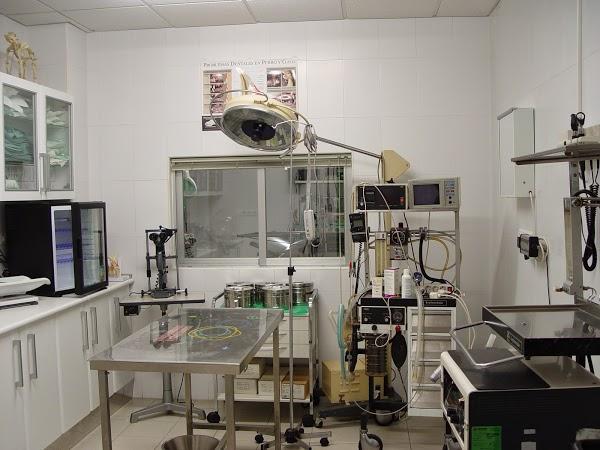 Imagen 47 Centro Clínico Veterinario foto