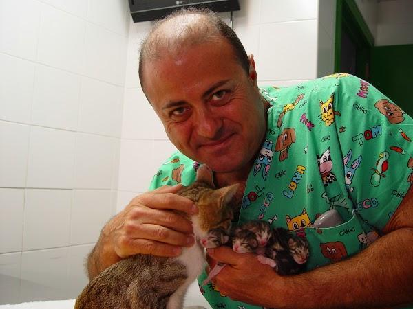 Imagen 48 Centro Clínico Veterinario foto
