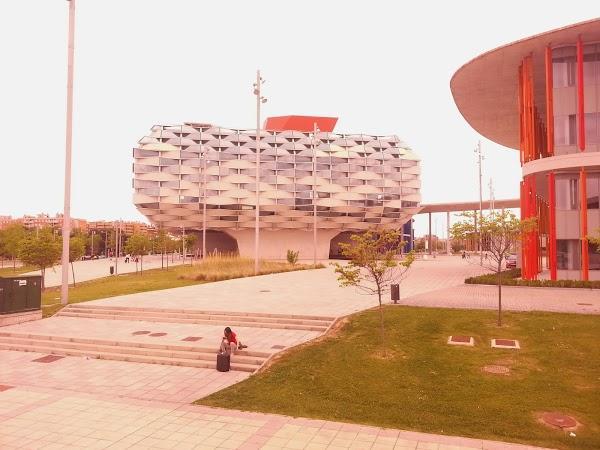 Imagen 55 Centro Clínico Veterinario foto