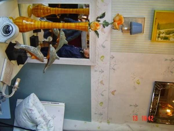 Imagen 15 Escuela Cuarta Pared foto