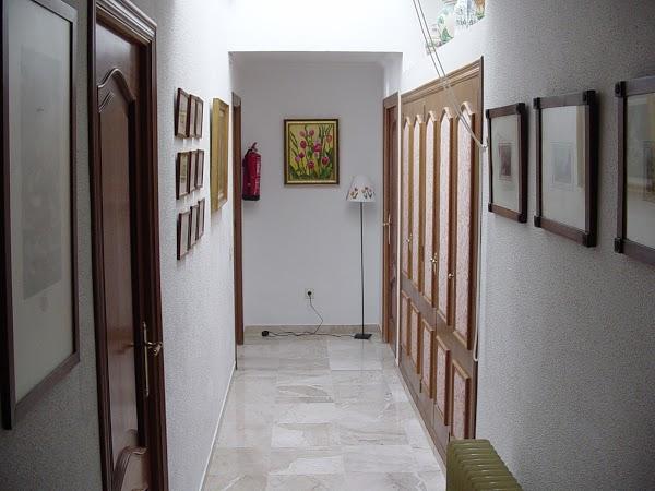 Imagen 7 Centro veterinario Txoni foto