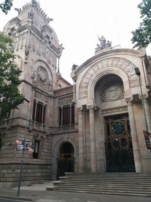 Imagen 1 Tribunal Superior de Justicia Servicio de Apoyo foto