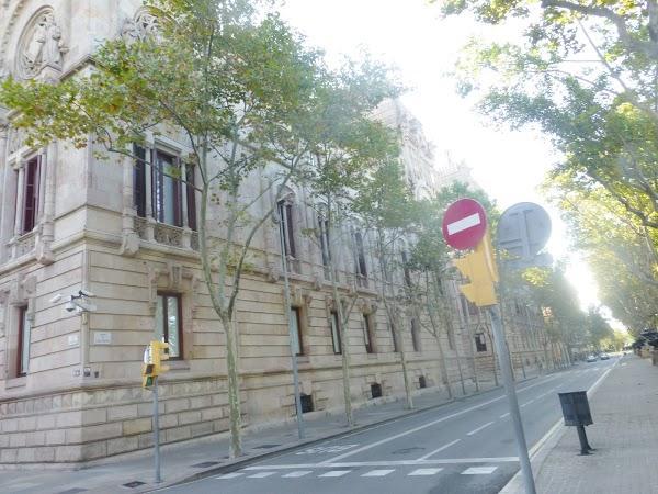 Imagen 101 Tribunal Superior de Justicia Servicio de Apoyo foto