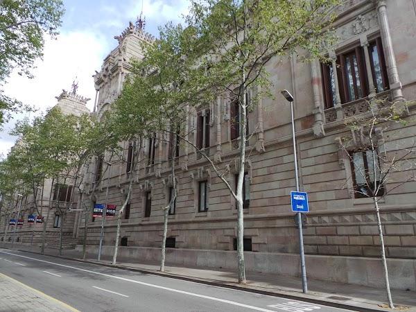 Imagen 64 Tribunal Superior de Justicia Servicio de Apoyo foto