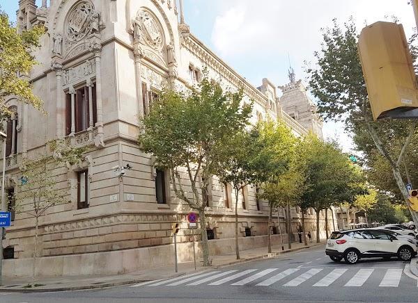 Imagen 67 Tribunal Superior de Justicia Servicio de Apoyo foto