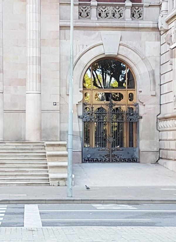Imagen 68 Tribunal Superior de Justicia Servicio de Apoyo foto
