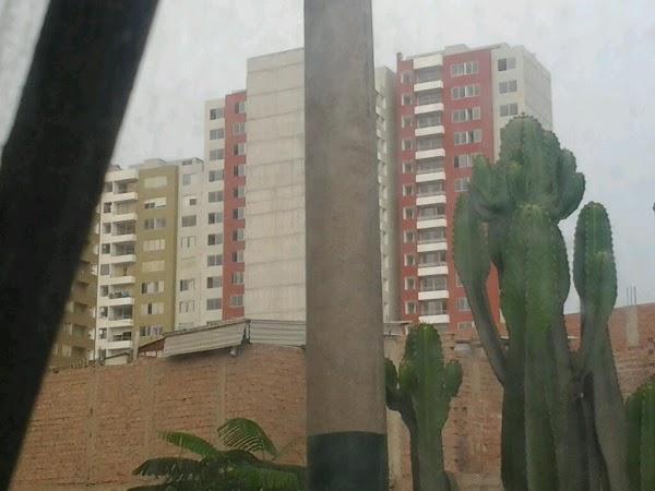 Imagen 4 Colegio Dominicas Vistabella foto