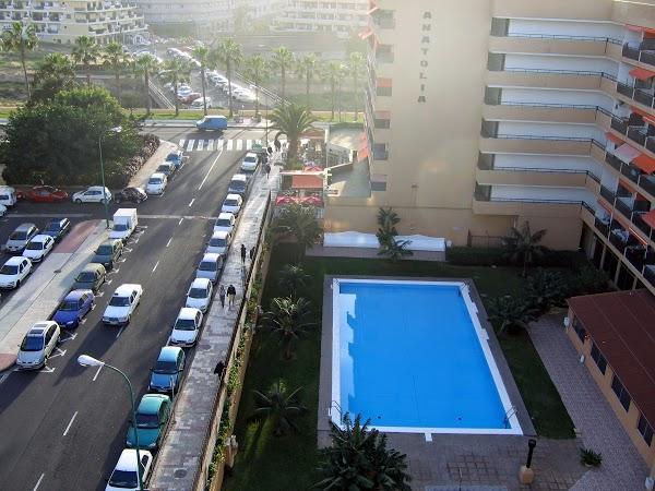 Imagen 18 Ameba Diseño foto