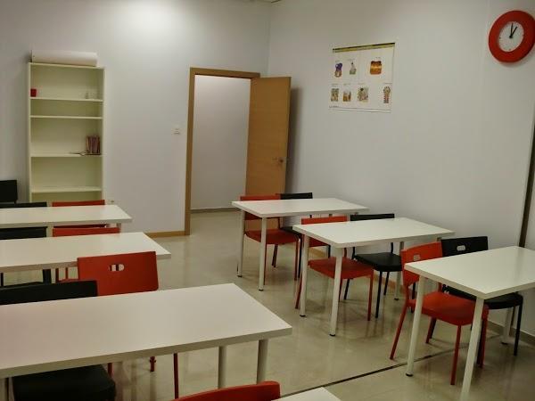 Imagen 19 Distribuidora del Baix Maresme S. A. foto