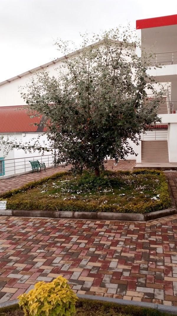 Imagen 40 El Corte Inglés. Centro de Oportunidades foto
