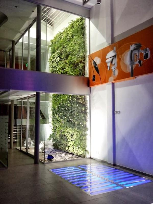 Imagen 7 Siempre Verde Diseño de Jardines foto