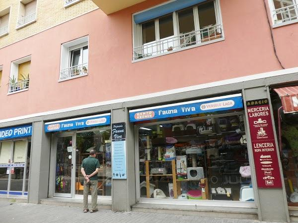 Imagen 35 Moliere Café foto