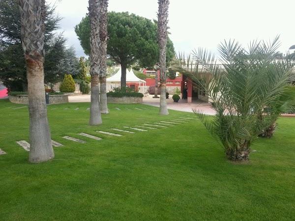 Imagen 1 Hotel Mediterraneo foto