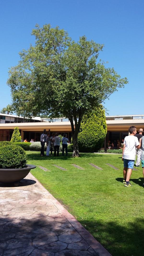 Imagen 7 Hotel Mediterraneo foto