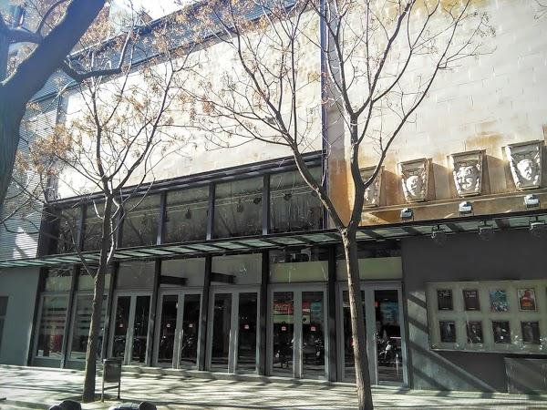 Imagen 419 Bosque Multicines 9 sales 3D foto