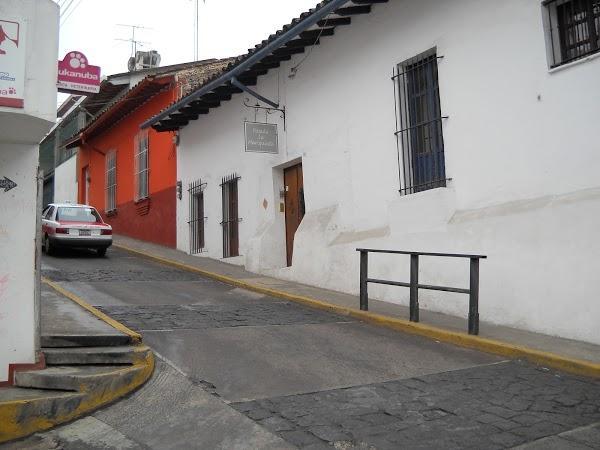 Imagen 21 LOBATEROS foto