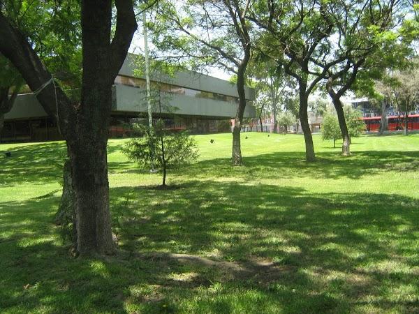 Imagen 2 Escuela PriMaría Federal José María Morelos foto